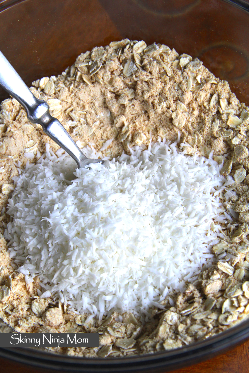 Coconut Cake Oatmeal Squares