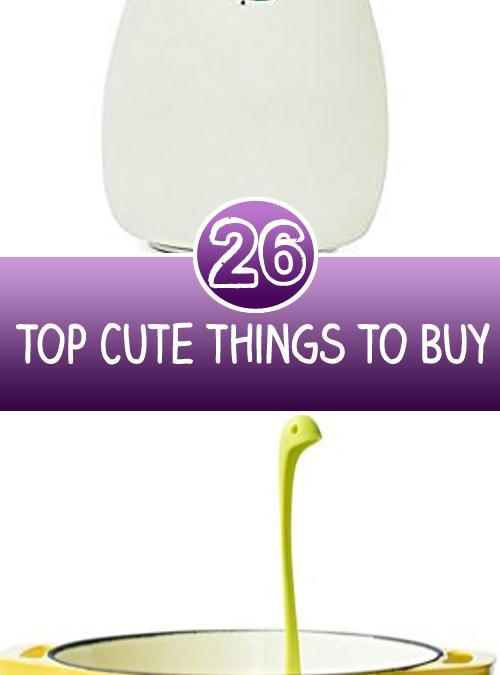 Top 26 Cute things to Buy